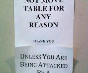 Do Not Remove Table funny picture