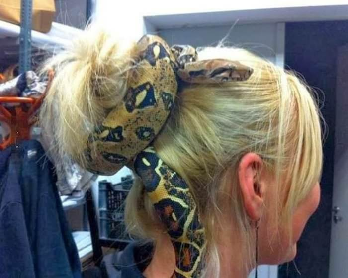 snake-hair.jpg
