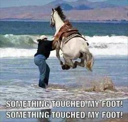 something touched my foot