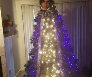 the prince christmas tree funny picture