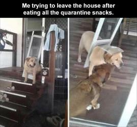 trying to leave the house