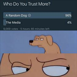 what do you trust more