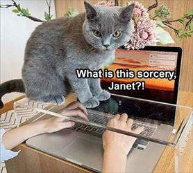 what is this janet