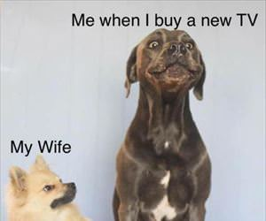 when I buy a new TB