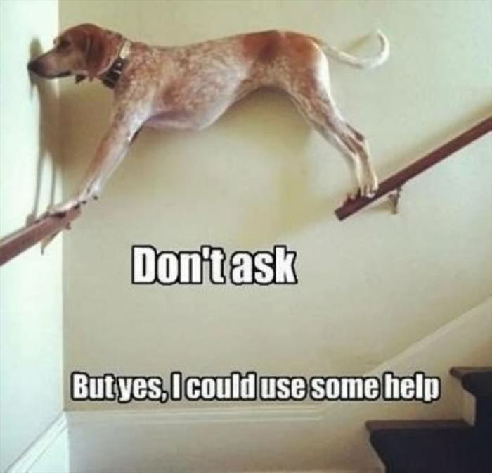 yes i can use some help