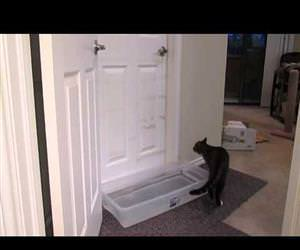 this awesome cat opening doors Funny Video